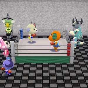 ポケ森:ボクシング