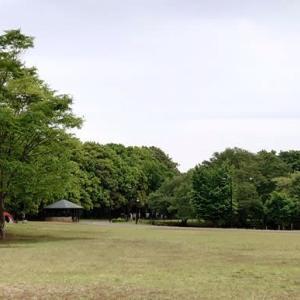キールガードその後と休日の公園