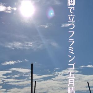20-9/25『俳句界10月号』