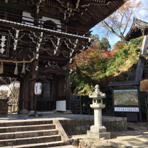 西国めぐり「西山善峯寺」、「今熊野観音寺」、「華頂山元慶寺」!
