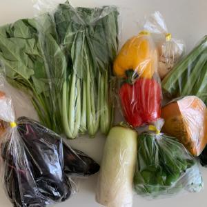 産直野菜♪