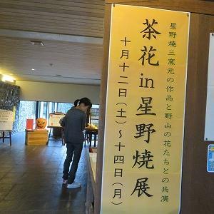 茶花in星野焼展