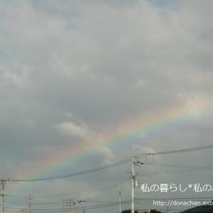 ++たくさんの虹&最後の更新*&お知らせ*++