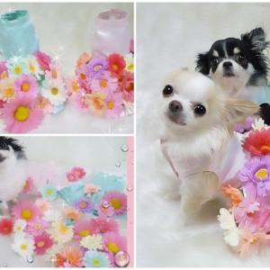 お花のドレスのメンテについて