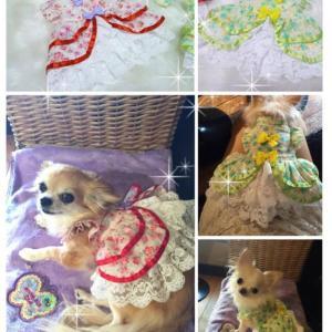 【FB企画】 春のドレスプレゼント
