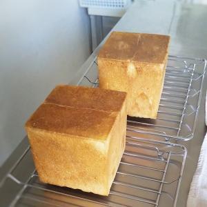 1斤食パンのレッスン