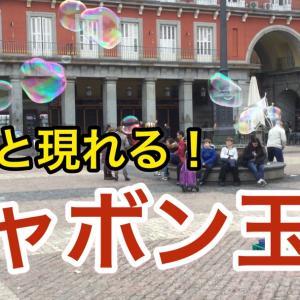【スペイン】次々現れるシャボン玉⠀マドリード⠀マヨール広場