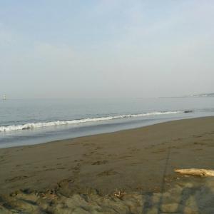 6月5日 湘南 平塚海岸