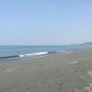 6月8日 湘南 平塚海岸