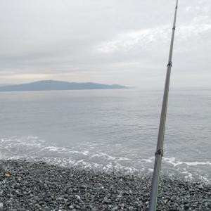 5月16日 静岡 富士海岸