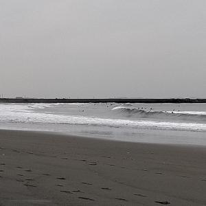 5月26日 湘南 平塚海岸
