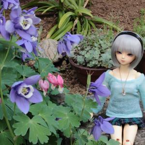 庭のお花と麗さん
