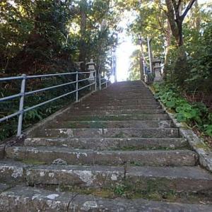 ヤブコウジの実・石段歩き。  (19-1106)