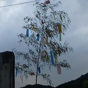 風車と七夕飾り。  (20-0707)