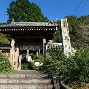 最明寺の萩  (20-0928)