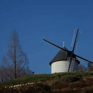 風車の丘迄  (21-0124)