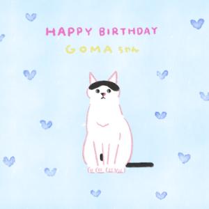 ゴマちゃんの誕生日