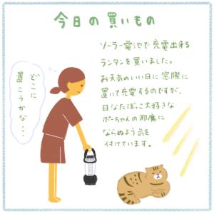 今日の買い物 〜ランタン〜