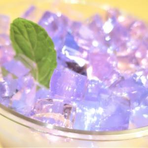 紫陽花ゼリー✨ ハイドランジア 鮮やかな紫陽花・特別栽培品種◆