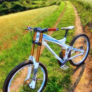 Zerode bikes XXXIII