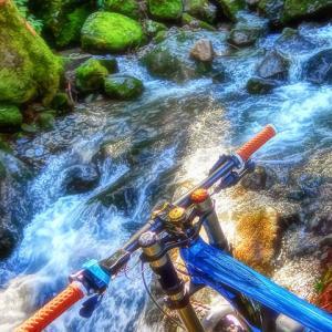 MERIDA eONE-SIXTY adventure XXVIII