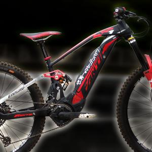 Welcome to the most powerful custom eMTB builder?
