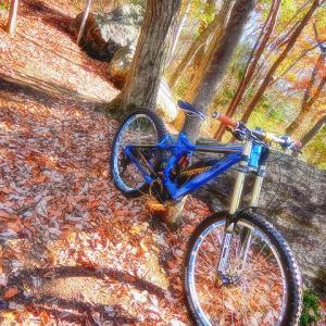 e-mountainbike dreamin XXXXXV