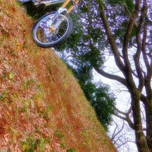Zerode bikes XXXVIII