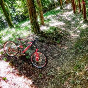 eMTB super trail routing II