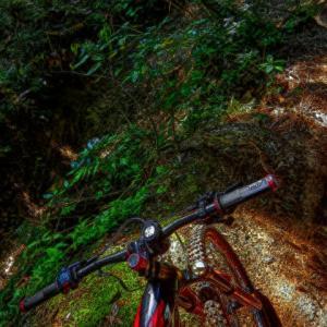 eMTB super trail routing III - 神龍