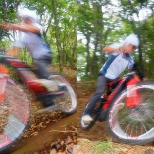 This is the Synchronized Electric Mountain Surfin'