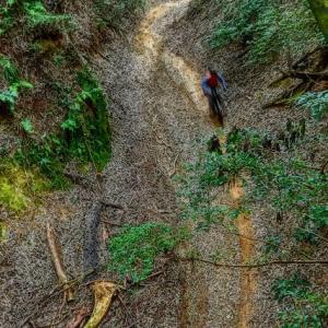 eMTB Super Trail X