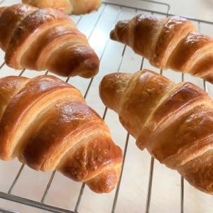 パン作り修行中