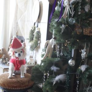 ぴゅんのクリスマス