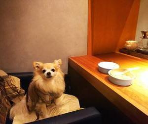千駄ヶ谷 MUTO で食事会