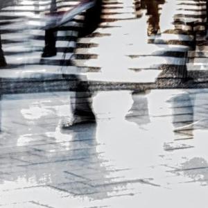 令和の陽光 (2020.3)