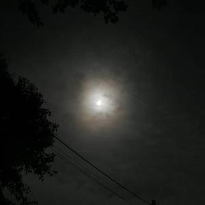 今宵は十三夜~十五夜を楽しんだら今宵の月も楽しまないといけません