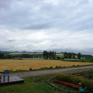 高いけど来夏は北海道のエルム高原オートキャンプ場でキャンプしたい