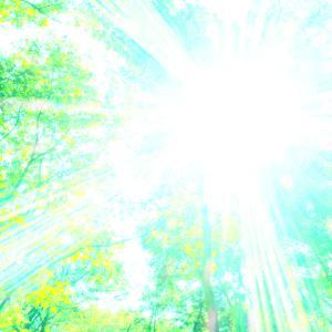 天が下した、光の手☆彡