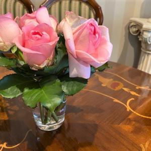 月1回以上花を買う人は17%
