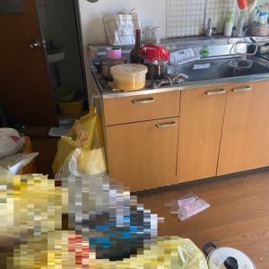 引っ越しの為のお部屋片付け(ビフォーアフター)名古屋市中心に生前整理