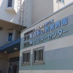 天神島臨海自然教育園