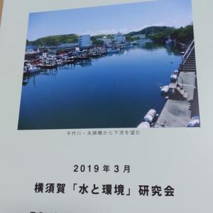 横須賀の川