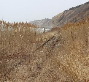 日高本線の鵡川~様似間廃止に伴って廃止された日高本線・節婦駅