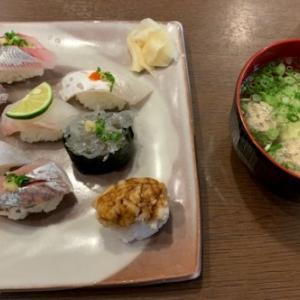 ピーターラビットの中皿 & 七里ガ浜「お魚亭」