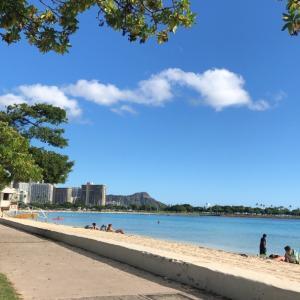 ハワイ滞在その③❇️泳ぎましたinアラモアナビーチ
