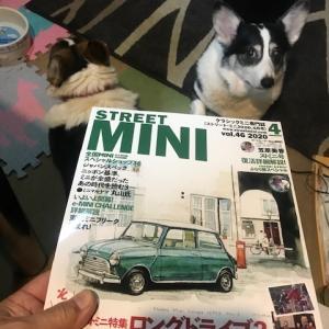 STREET MINI 最新号が届いたよ!