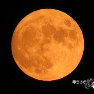 オレンジ色のお月様