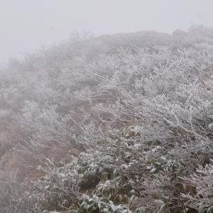 紅葉を見に行った谷川岳は吹雪でした