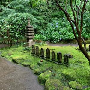 寺と神社の違いがイマイチわかんない。